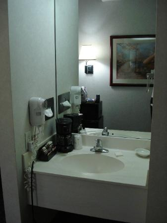 Baymont Inn & Suites Des Moines Airport: the amazing extra vanity