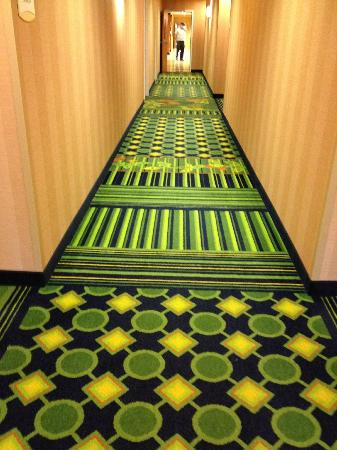 Fairfield Inn & Suites by Marriott Naples : hallway