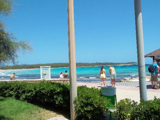 Protur Palmeras Playa Hotel: beach