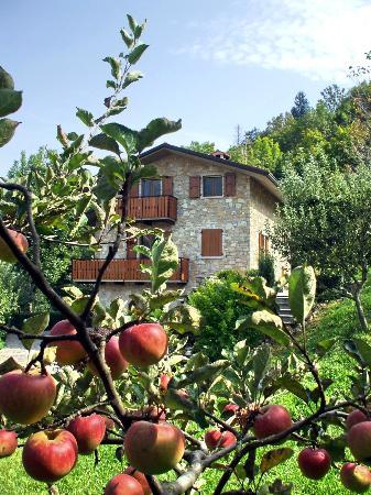 Photo of Casa Martina Zogno