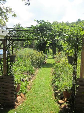 Meadowsweet Gardens Inn: A view of the gardens