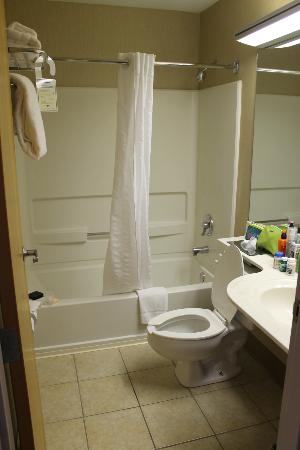 Microtel Inn & Suites by Wyndham Erie: Bathroom