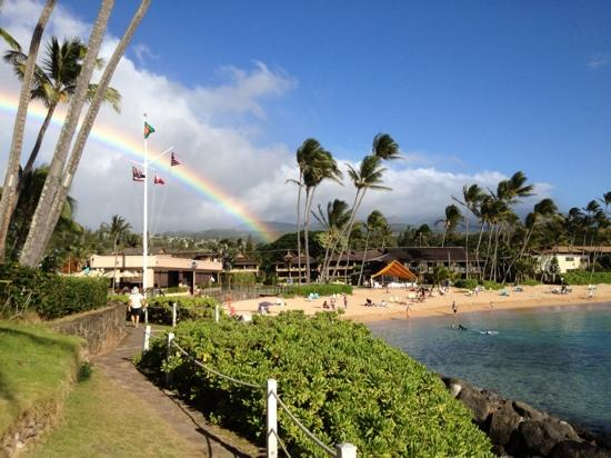 Napili Kai Beach Resort: the rainbow was free!!!!! our first day this is how we were greeted!!