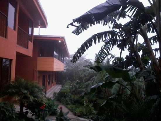 هوتل كايبريسس: Uno de los complejos habitacionales de Hotel Cipreses 