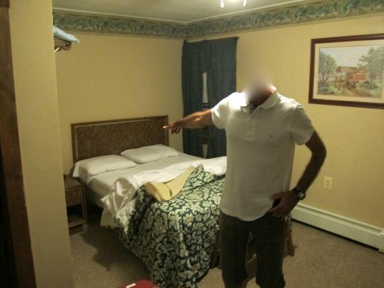 Pioneer Motel: vista della camera