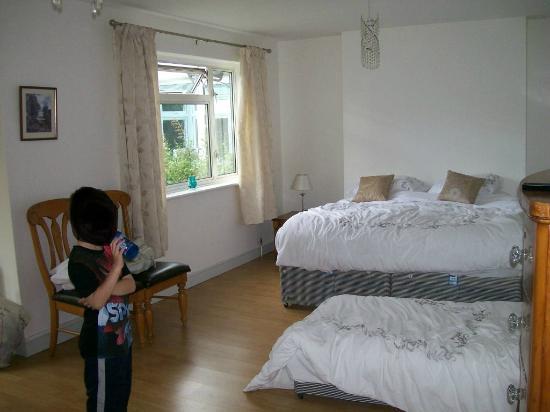 Savannah Bed & Breakfast : Queen double bed (very comfortable) & kids single bed (low off the floor)