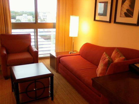 Residence Inn Norfolk Downtown: Studio living room