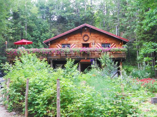 Welch Mountain Chalet Bed & Breakfast: Welch Mountain Chalet