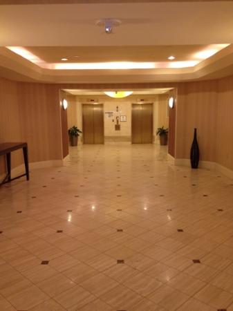 Crowne Plaza Annapolis: great path to elevators!