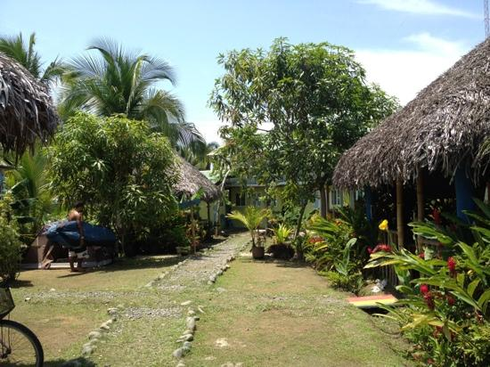 Hostal Mar e Iguana: mar e iguana