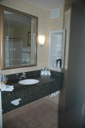 Holiday Inn Express Hotel & Suites Idaho Falls: Bathroom sink