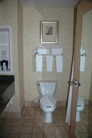 Holiday Inn Express Hotel & Suites Idaho Falls: Toilet
