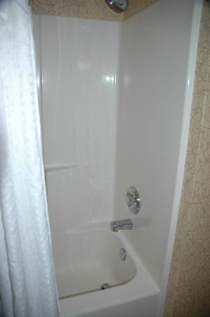 Holiday Inn Express Hotel & Suites Idaho Falls : Shower