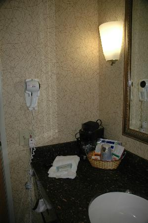 Holiday Inn Express Hotel & Suites Idaho Falls : Sink