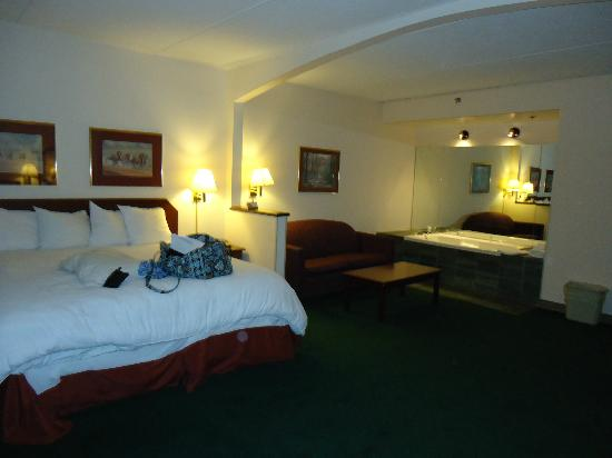 Vernon Downs Hotel: Room