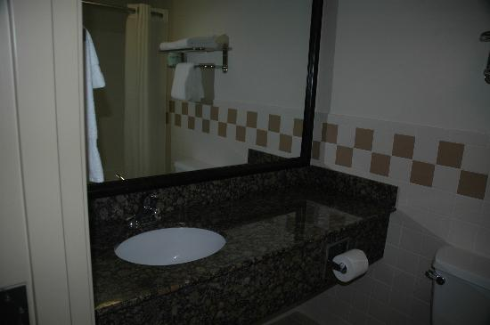 BEST WESTERN PLUS McCall Lodge & Suites: Sink