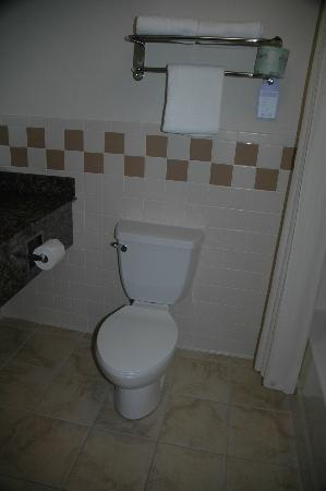 BEST WESTERN PLUS McCall Lodge & Suites: Toilet