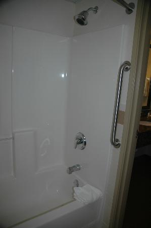 BEST WESTERN PLUS McCall Lodge & Suites: Shower