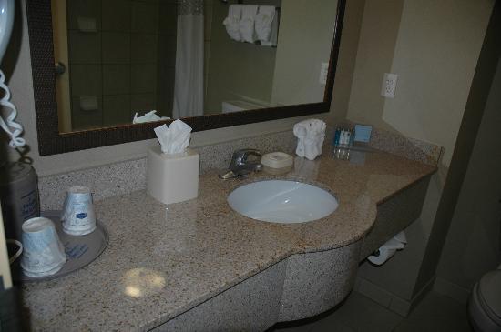 Hampton Inn & Suites Boise Downtown: Sink
