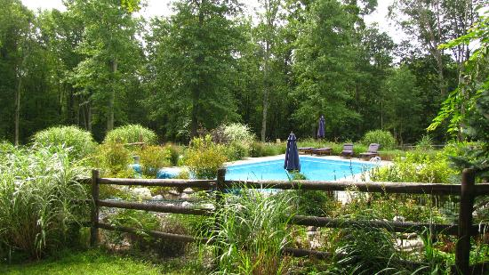 Bernetta's Place Bed & Breakfast Inn by the Lake : pool area, hot tub around corner