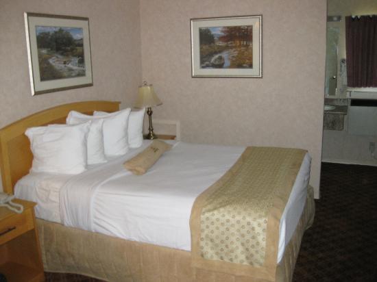 Sword Motor Inn: Room