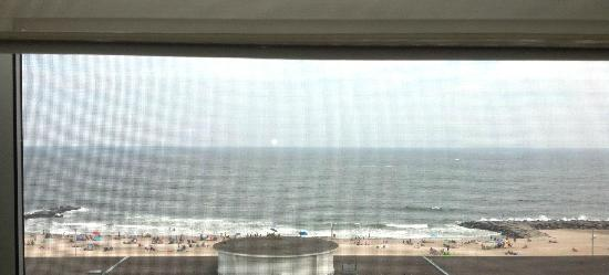 Berkeley Oceanfront Hotel: our view