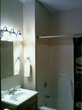 Bear Creek Lodge: nice clean bathroom!