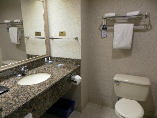 BEST WESTERN PLUS Toronto Airport Hotel: Salle de bain
