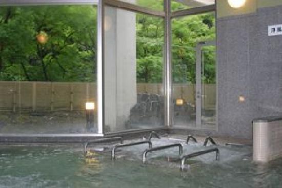 Aoidake Onsen Aoidakeso: 青井岳洋浴場