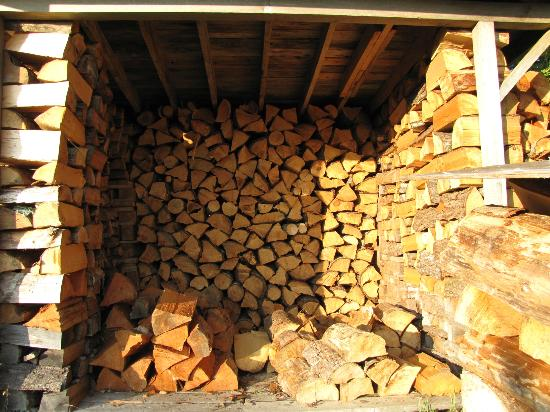 Ocean Dreams Guest Suites: Amazing wood pile for use at the fire pit