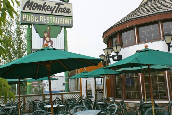 Sam's Monkey Tree Pub