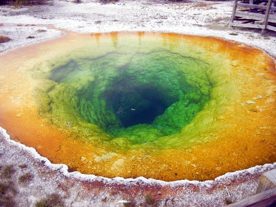 Upper Geyser Basin : Morning Glory Pool