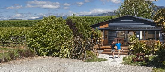 Laughing Kiwi Backpackers: The Backpacker Lodge is at the rear, next to a kiwi orchard.