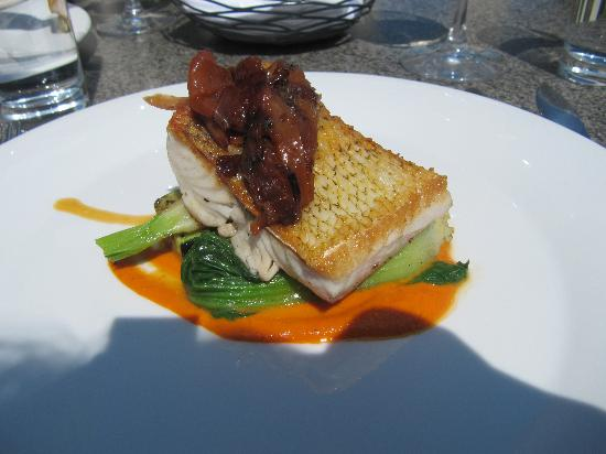 Vineland Estates Winery Restaurant: Seared pickerel with seasonal vegetables