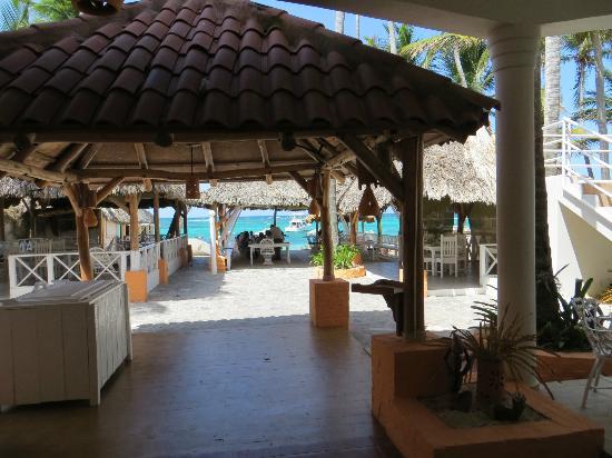 Palma's sand : looking through Palma Sands