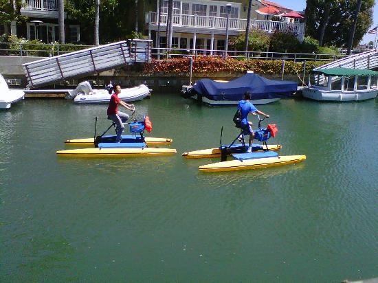 Naples Island: Hydro Bicycles