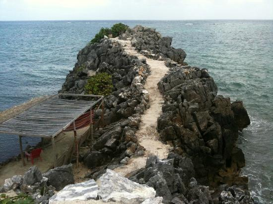 Paya Bay Resort: trail