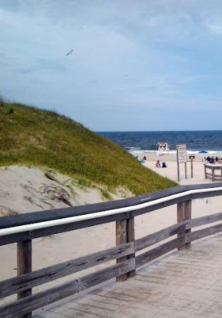 Island Beach State Park: Full View