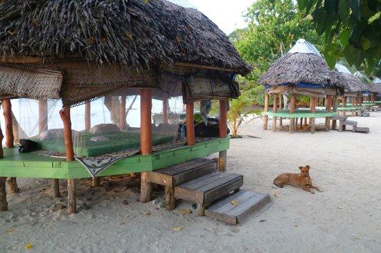 Namua Island Resort: Fale with Kali 2