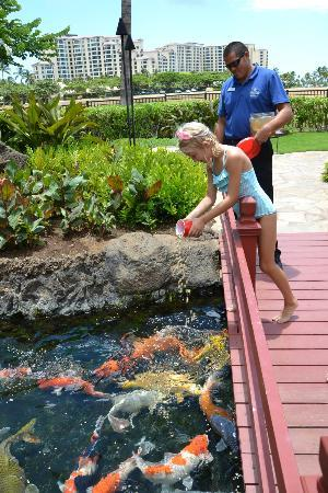 Beach Villas at Ko Olina: Feeding time.