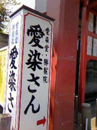 Aizindo Shomanin Shrine: また訪れたいな