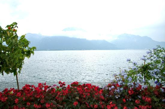 Lakeside Promenade Fleuri: Montreux- View across the lake from the Promenade