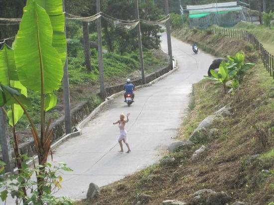 Rollerball Zorbing Phuket: girl friend walking down the big hill home