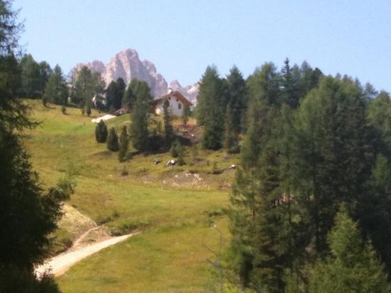 Family Hotel La Grotta: dolomiti