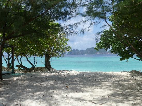 Paradise Resort Phi Phi: The view from our room