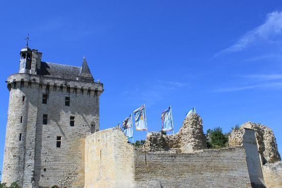 Camping Municipal de l'Ile Auger: Chinon fortress