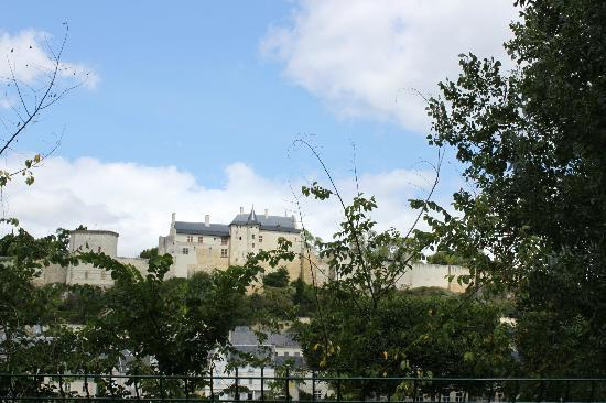 Camping Municipal de l'Ile Auger: The view from the campsite in Chinon