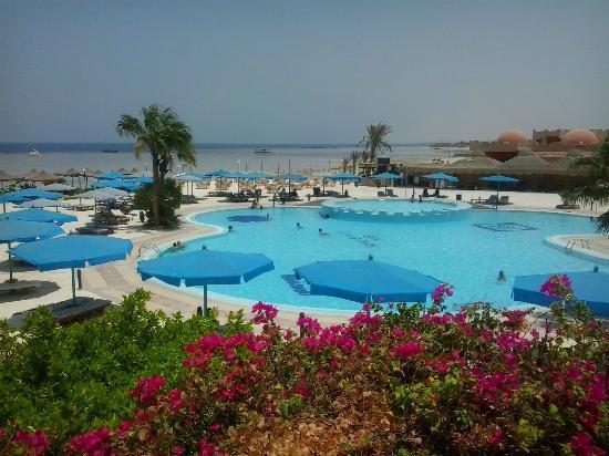 Blue Reef Red Sea Resort: swimming pool view