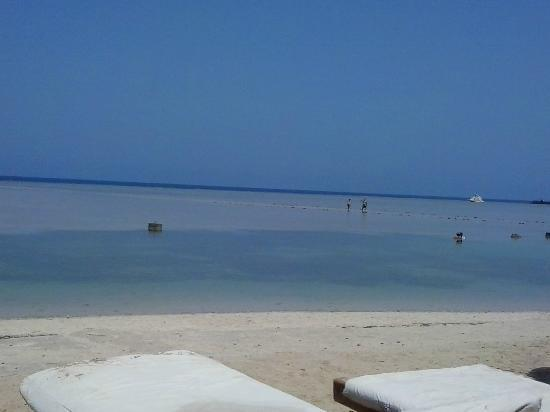 Blue Reef Red Sea Resort: the beach