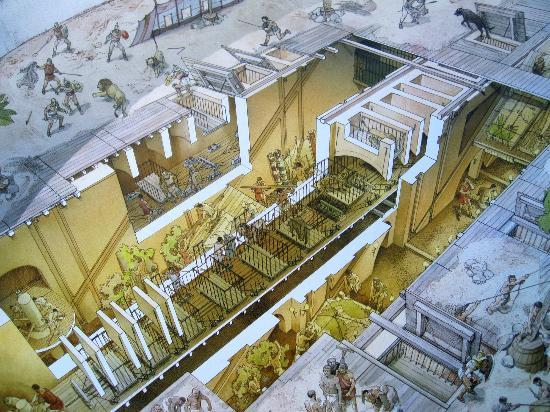 Diagram inside the Colosseo museum - second level - Picture of ...